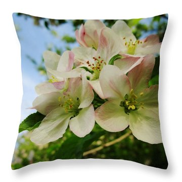 Welcome Blossoms Throw Pillow