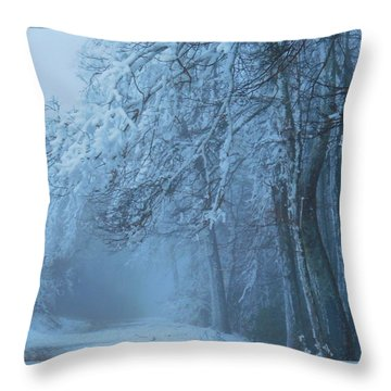 Welcoming The Light Throw Pillow