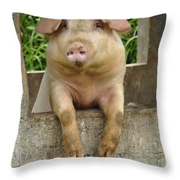 Well Hello There Throw Pillow
