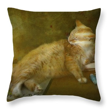 Well Read Throw Pillow by Kandy Hurley