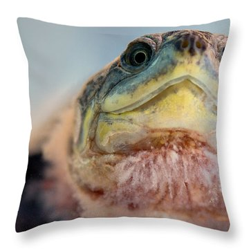 Were You Looking At Throw Pillow