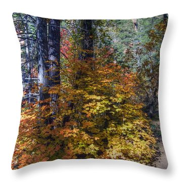 West Fork Fall Color Throw Pillow