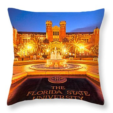 Westcott Lights Throw Pillow