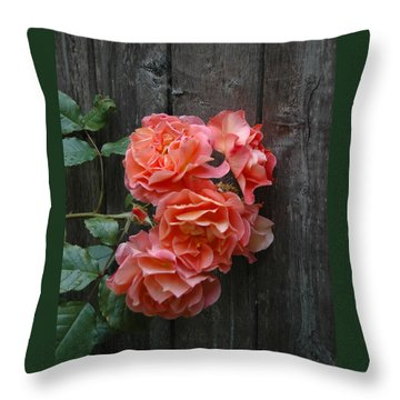 Throw Pillow featuring the photograph Westerland Rose Wood Fence by Tom Wurl