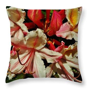 Throw Pillow featuring the photograph Western Azalea by VLee Watson