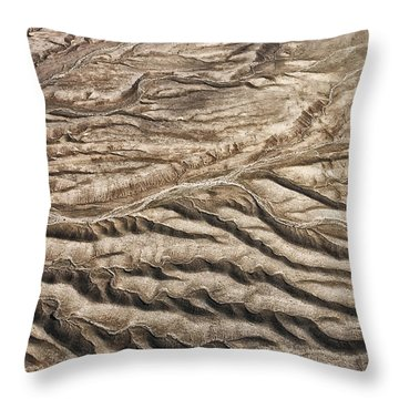 Throw Pillow featuring the photograph Western Desert Tapestry by Gary Slawsky