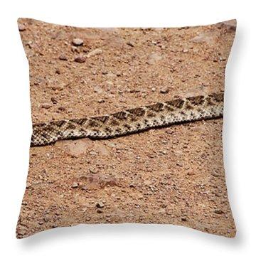 Western Diamondback Rattle Snake Throw Pillow