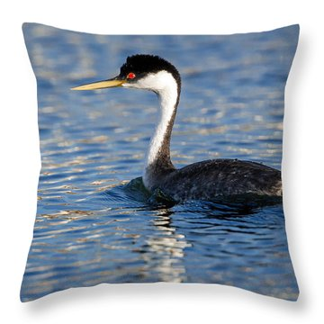 Throw Pillow featuring the photograph Western Grebe by Jack Bell