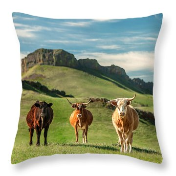 Western Longhorns Throw Pillow