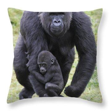 Western Lowland Gorilla Walking Throw Pillow by Duncan Usher