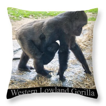 Western Lowland Gorilla With Baby Throw Pillow by Chris Flees