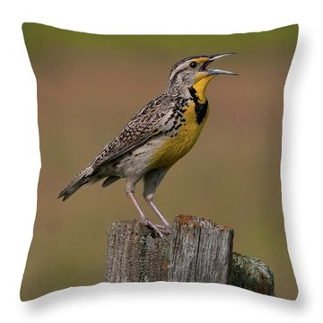 Western Meadowlark.. Throw Pillow by Nina Stavlund