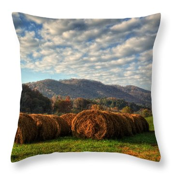 Western North Carolina Hay Field Throw Pillow