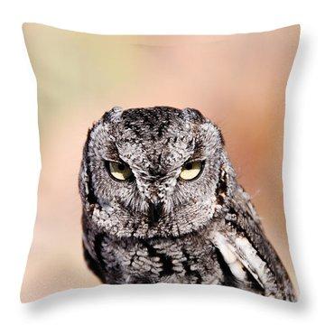 Western Screech Owl Throw Pillow by Bonnie Fink