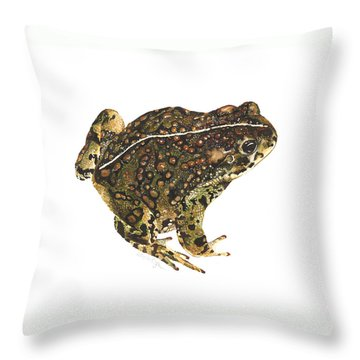 Western Toad Throw Pillow by Cindy Hitchcock