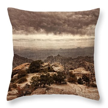 Western Wilderness I Throw Pillow