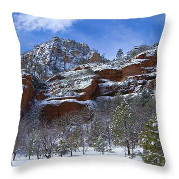 Westfork Captivates Throw Pillow by Tom Kelly