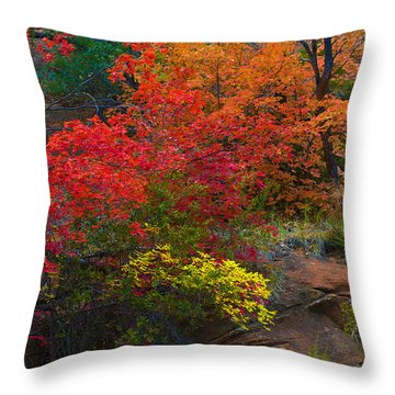 Throw Pillow featuring the photograph Westfork's Colors by Tom Kelly