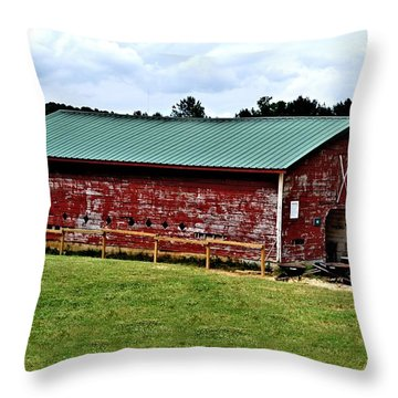 Westminster Stable Throw Pillow by Tara Potts