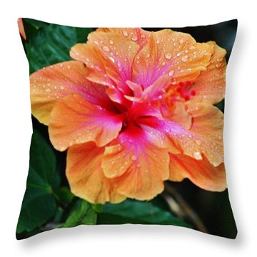 Wet And Wonderful Throw Pillow by Craig Wood
