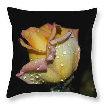 Wet And Wonderful Throw Pillow