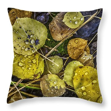 Wet Aspen Floor Throw Pillow