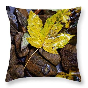 Wet Autumn Leaf On Stones Throw Pillow