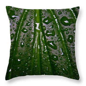 Wet Hosta Leaf Throw Pillow