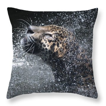 Wet Jaguar  Throw Pillow