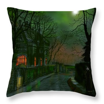 Wet Lane In Winter Throw Pillow
