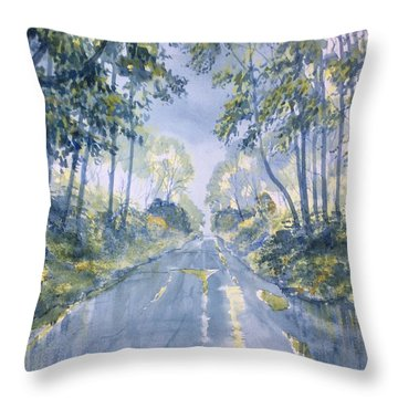 Wet Road In Woldgate Throw Pillow