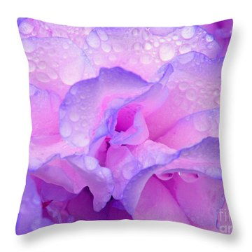Wet Rose In Pink And Violet Throw Pillow