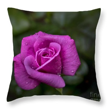 Wet Rose Throw Pillow