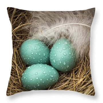Wet Trio Of Robins Eggs Throw Pillow