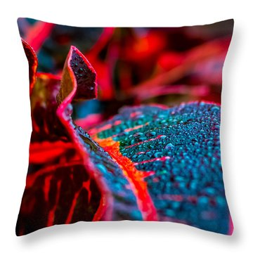 Wet Visions Throw Pillow