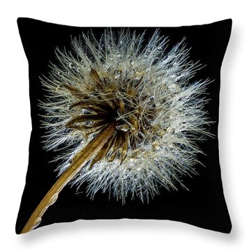 Wet Weed Throw Pillow by Jean Noren