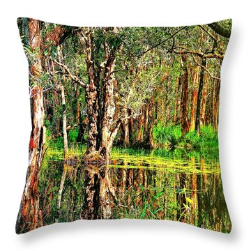Throw Pillow featuring the photograph Wetland Reflections by Wallaroo Images