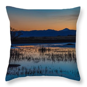 Wetland Twilight Throw Pillow by Beverly Parks