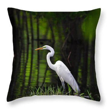 Wetland Wader Throw Pillow by Al Powell Photography USA