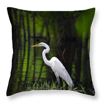 Wetland Wader Throw Pillow