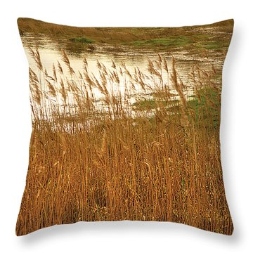 Wetlands Throw Pillow by David Davies