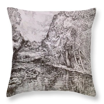 Wetlands Throw Pillow by Iya Carson