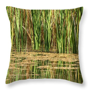 Throw Pillow featuring the photograph Wetlands by Laurel Powell