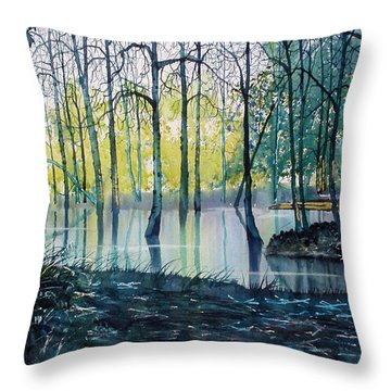Wetlands On Skipwith Common Throw Pillow
