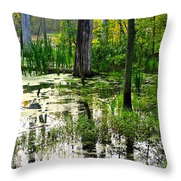 Wetlands Throw Pillow by Frozen in Time Fine Art Photography