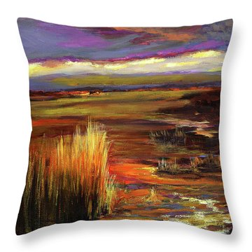 Wetlands Sunset Iv Throw Pillow