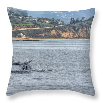 Whale Sighting Throw Pillow