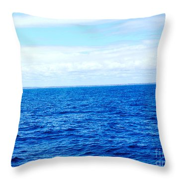 Throw Pillow featuring the photograph Whale Tail by Cassandra Buckley