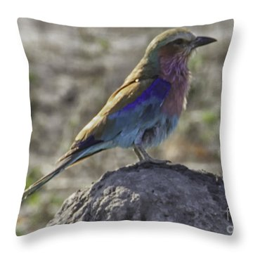 What A Beauty Throw Pillow