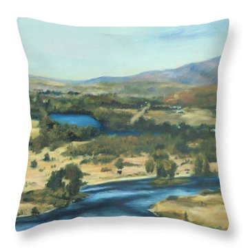 What A Dam Site Throw Pillow